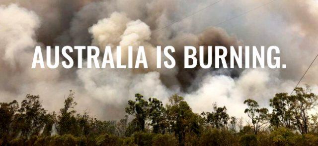 The Bushfire Charity Event